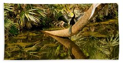 Oriental Darter Anhinga Melanogaster Beach Towel by Panoramic Images