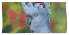 Original Animal Oil Painting Art -parrot #16-2-5-17 Beach Towel