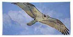 Osprey 91711 Beach Towel by Deborah Benoit