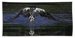 Osprey Bird Of Prey Beach Sheet