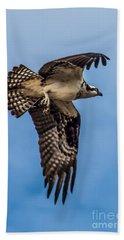 Osprey Flying Away Beach Towel