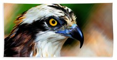 Osprey Portrait Beach Towel by Dan Friend