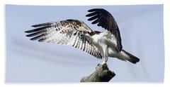 Osprey Pride 2 Beach Sheet