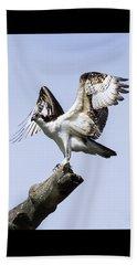 Osprey Pride 6 Beach Sheet