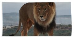 Out Of Africa Lion 3 Beach Sheet