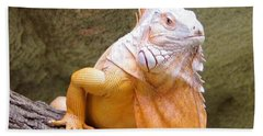 Out Of Africa Orange Lizard 1 Beach Towel