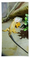 Out Of Africa Orange Lizard 2  Beach Towel
