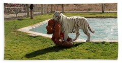 Out Of Africa Tiger Splash 2 Beach Towel