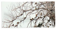 Beach Sheet featuring the photograph Out On A Limb First Snow by Barbara Chichester