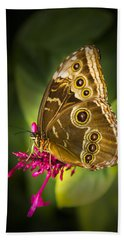 Owl Butterfly With A Hat Beach Towel