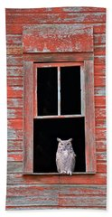 Owl Window Beach Towel