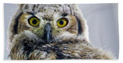 Owlet Close-up Beach Towel
