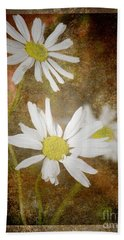 Ox Eye Dasies Beach Towel by Lynn Bolt