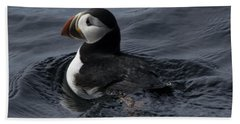 Beach Towel featuring the photograph Paddling Puffin by Daniel Hebard