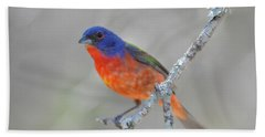 Painted Bunting Beach Sheet