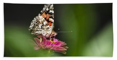Beach Towel featuring the photograph Painted Lady Butterfly At Rest by Christina Rollo