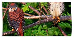 Caribbean Falcons Beach Sheet