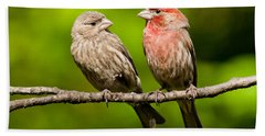 Pair Of House Finches In A Tree Beach Sheet