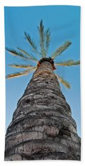 Palm Tree Looking Up Beach Towel