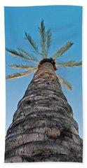 Palm Tree Looking Up Beach Towel