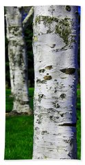 Aaron Berg Photography Beach Towel featuring the photograph Paper Birch Trees by Aaron Berg