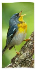 Parula Song Beach Towel