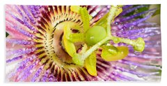 Passiflora The Passion Flower Beach Sheet by Olga Hamilton