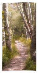 Beach Towel featuring the photograph Path 1 by Pamela Cooper