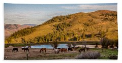 Patterson Mountain Afternoon View Beach Towel