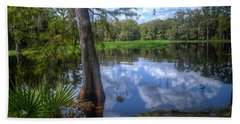 Beach Towel featuring the photograph Peaceful Florida by Timothy Lowry
