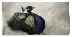 Beach Sheet featuring the photograph Peacock by Bradley R Youngberg