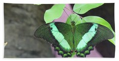 Beach Towel featuring the photograph Peacock Swallowtail by Lingfai Leung