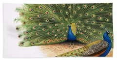 Peacocks Beach Towel by RB Davis