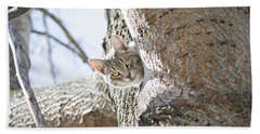 Peaking Cat Beach Towel