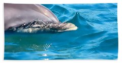 Peeking Dolphin Beach Towel by Debra Forand