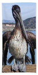 Pelican At Avila Beach Ca Beach Sheet