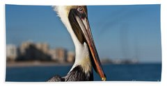 Beach Towel featuring the photograph Pelican by Barbara McMahon