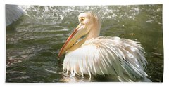 Pelican Bath Time Beach Sheet