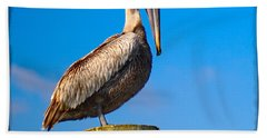 Beach Towel featuring the photograph Pelican by Carsten Reisinger