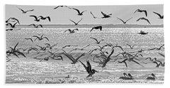 Pelican Chaos Beach Sheet by Betsy Knapp