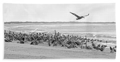 Pelican Convention  Beach Sheet by Betsy Knapp
