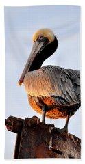 Pelican Looking Back Beach Towel