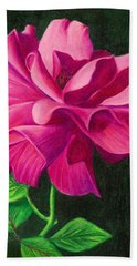 Pencil Rose Beach Towel by Janice Dunbar