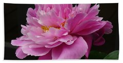 Beach Towel featuring the photograph Peony Blossoms by Lingfai Leung