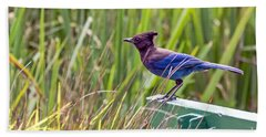 Perching Jay Beach Towel by Kate Brown