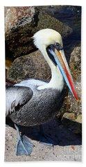 Peruvian Pelican Beach Towel