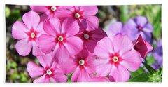 Beach Towel featuring the photograph Phlox Beside The Road by D Hackett