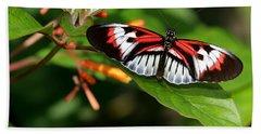 Piano Key Butterfly On Fire Bush Beach Towel
