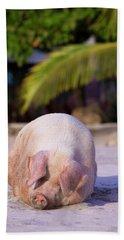 Pig On Beach On Costa Rica Beach Towel