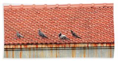 Beach Sheet featuring the photograph Pigeons On Roof by Aaron Martens